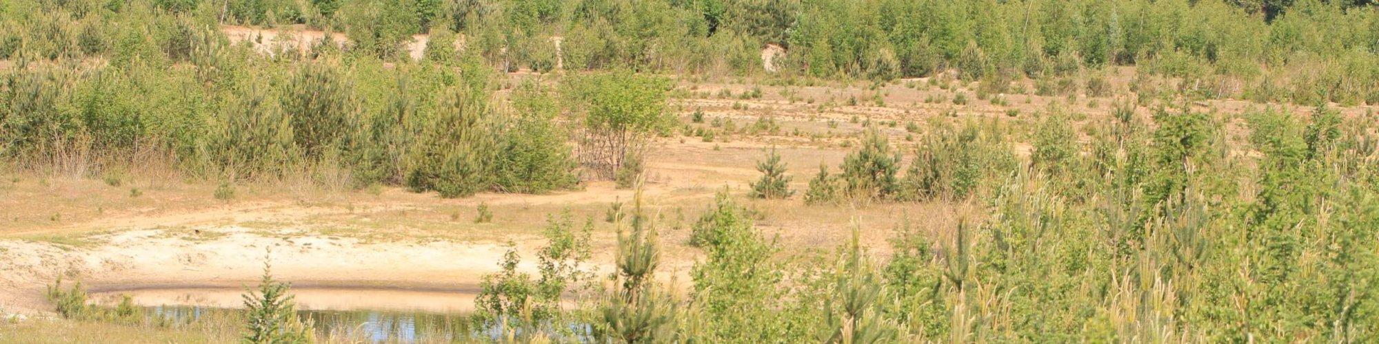 Blick über Sandkuhle Foto: H-U Kulpa Mai 2020